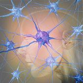 depositphotos_28185579-Human-neurons